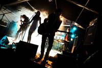 2007-06-16 - Du Pacque spelar på Hultsfredsfestivalen, Hultsfred